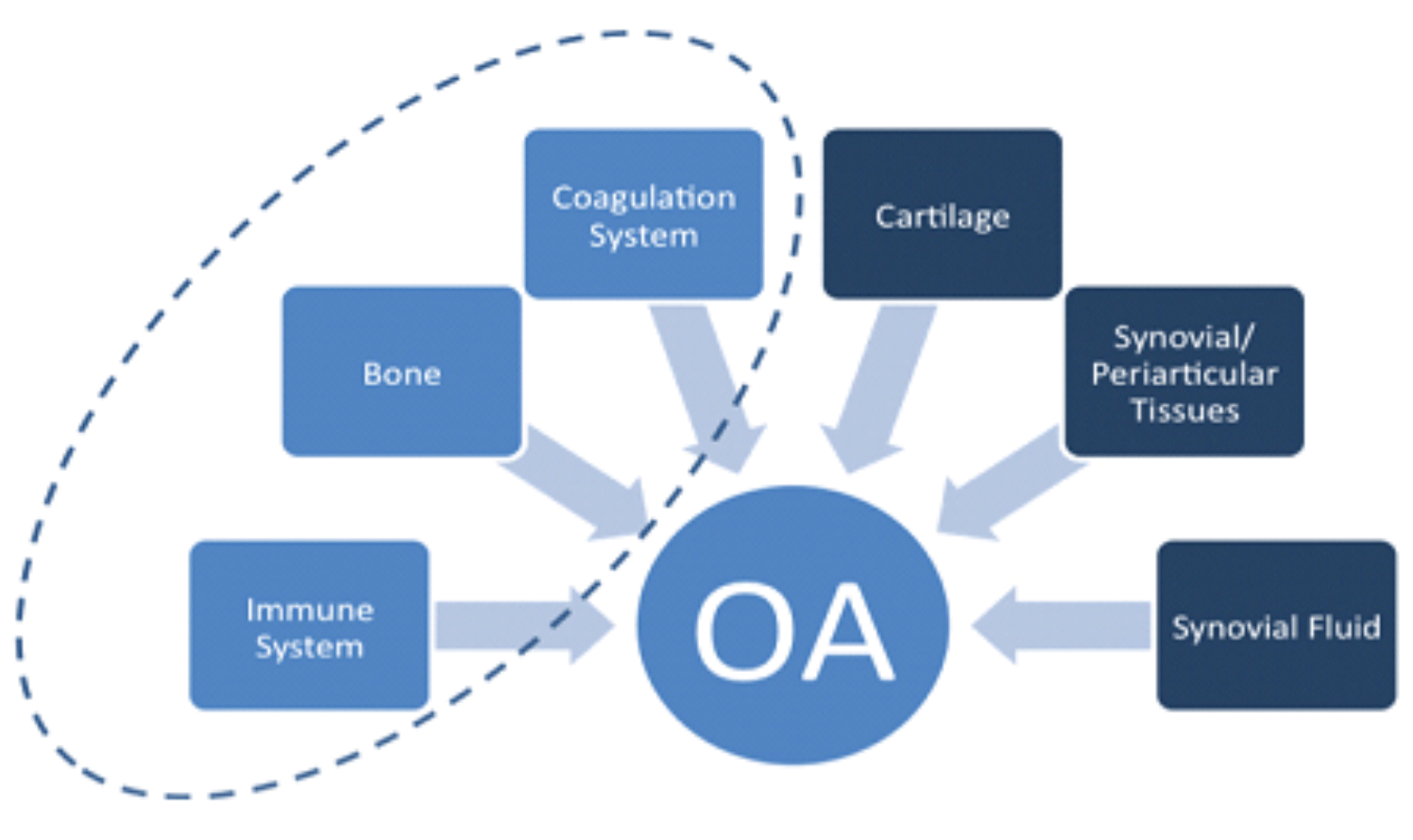 OA-diagram